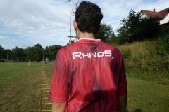 Rhinos_Flag-7